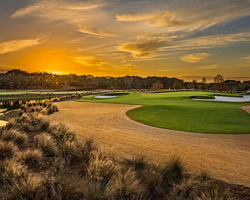 Naples Fort Myers- Special expedition-Ritz Carlton Naples Golf Resort - Play Tiburon Club for 497 00 per day -Ritz Carlton Naples Golf Resort Peak Season Special