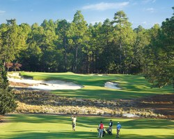 Golf Vacation Package - Pinehurst