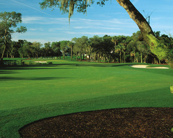 Kiawah Island- Special outing-Kiawah Island Resort Stay and Play - starting at 299 per person per day -Stay and Play 8 13 - 9 3 Ref 664882