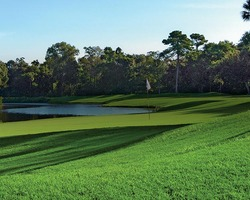 Golf Vacation Package - Palmetto Dunes - Arthur Hills