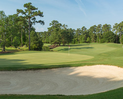 Myrtle Beach- GOLF trek-Arrowhead Country Club-AM Package Rate