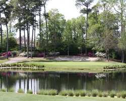 Myrtle Beach- GOLF outing-Arcadian Shores Golf Club