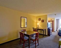Fort Lauderdale-Lodging trek-Comfort Suites Weston-Standard Room