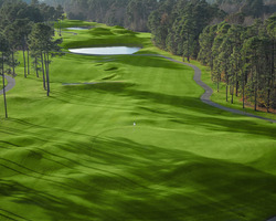 Myrtle Beach-Golf weekend-Wild Wing Plantation - Avocet