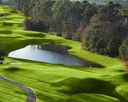 Myrtle Beach-Golf trek-Wild Wing Plantation - Avocet