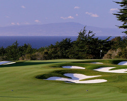 Monterey- GOLF expedition-Bayonet Black Horse - Bayonet Course-Daily Rate with Cart