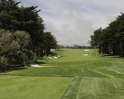Monterey- GOLF tour-Bayonet Black Horse - Bayonet Course-Daily Rate with Cart