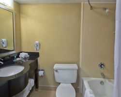 West Palm Beach-Lodging expedition-Best Western Palm Beach Lakes-Standard Hotel Room