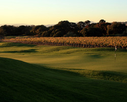 San Francisco-Golf tour-Chardonnay Golf Club-Green Fee incl cart
