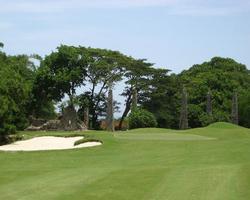 Montego Bay-Golf travel-Cinnamon Hill Golf Club