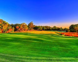 Golf Vacation Package - Charleston National Golf Club
