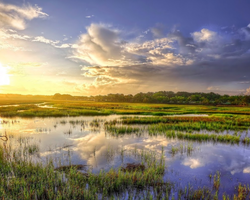 Charleston-Special outing-Wild Dunes Resort Stay and Play for only 199 per person per day -Wild Dunes Stay and Play