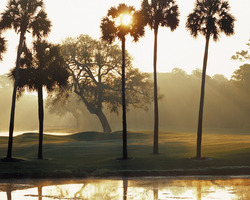Kiawah Island- GOLF outing-Cougar Point-Daily Rate