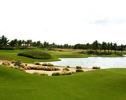 Punta Cana-Special excursion-Westin Punta Cana Resort Club - All-Inclusive for 507 per day -Westin PuntaCana Resort Golf Experience Package - Summer Early Fall