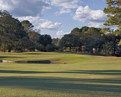 Golf Vacation Package - Crescent Pointe Golf Club