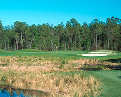 Myrtle Beach-Golf tour-Diamondback Country Club
