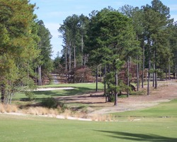 Sandhills- GOLF tour-Deercroft Golf Club