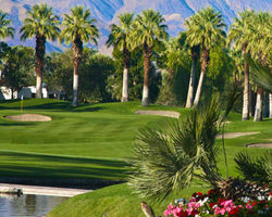 Palm Springs- GOLF travel-Desert Springs - Palm Course-Daily Rate