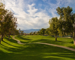 Palm Springs- GOLF excursion-Desert Springs - Palm Course-Daily Rate