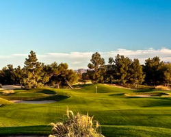 Las Vegas- GOLF vacation-Desert Pines Golf Club-Daily Rate