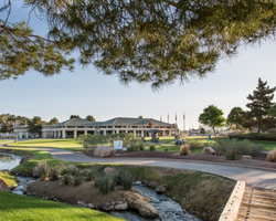 Las Vegas- GOLF trek-Desert Pines Golf Club-Daily Rate