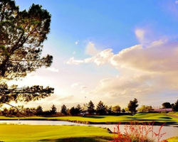 Las Vegas- GOLF excursion-Desert Pines Golf Club-Daily Rate