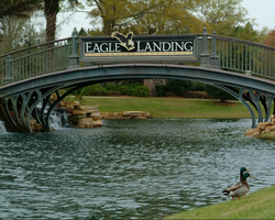Jacksonville St Augustine- GOLF expedition-Eagle Landing-Daily Rate