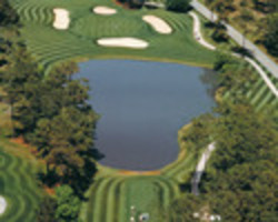 Myrtle Beach- GOLF expedition-Eagle Nest Golf Club-Daily Rate
