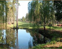 Myrtle Beach-Golf excursion-Eagle Nest Golf Club