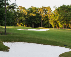 Robert Trent Jones Trail- GOLF trek-Magnolia Grove - Falls Course-Daily Rate