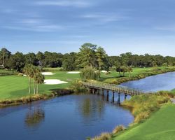 Hilton Head- GOLF tour-Palmetto Dunes - Fazio