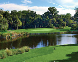 Hilton Head- GOLF holiday-Palmetto Dunes - Fazio