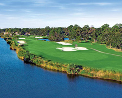 Hilton Head- GOLF excursion-Palmetto Dunes - Fazio
