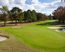 Nature Coast Golf Trail- GOLF travel-Championship Course at The Plantation-Round