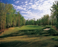 Williamsburg-Golf excursion-Golden Horseshoe Golf Club - Green Course