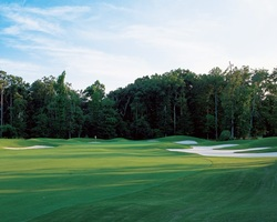 Williamsburg-Golf tour-Golden Horseshoe Golf Club - Green Course