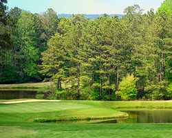 Sandhills- GOLF tour-Foxfire Golf Country Club - East Course