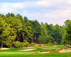 Sandhills- GOLF expedition-Foxfire Golf Country Club - East Course