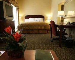 Daytona- LODGING tour-Homewood Suites by Hilton-1 Bedroom Double Queen Suite