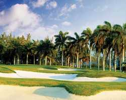 Montego Bay-Golf excursion-Half Moon Golf Club-Daily Rate