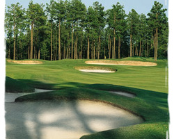 Sandhills- GOLF vacation-Pinewild - Holly Course