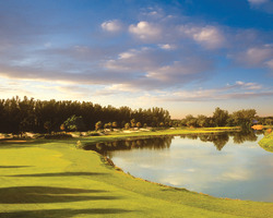 Tampa St Petersburg-Golf expedition-Longboat Key Club Resort - Harbourside Course-Daily Rate