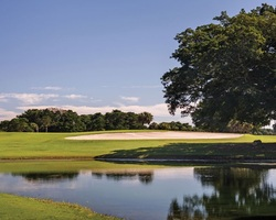Tampa St Petersburg-Golf excursion-Longboat Key Club Resort - Islandside Course-Daily Rate