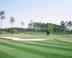 Myrtle Beach-Golf trek-World Tour Golf Links