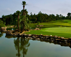Golf Vacation Package - Juliette Falls Golf Club
