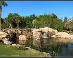 Tampa St Petersburg-Golf vacation-Juliette Falls Golf Club-Daily Rate