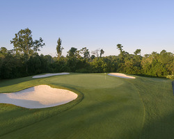 Orlando-Golf tour-Disney Lake Buena Vista-Daily Rate