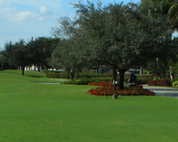 Orlando- GOLF trek-Legends Golf and Country Club-Daily Rate