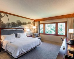 Robert Trent Jones Trail- LODGING tour-Marriott Hotel Capitol Hill-Standard Room