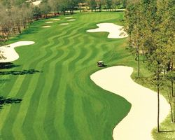 Myrtle Beach-Golf outing-Lockwood Folly Country Club